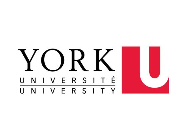 Equity, Diversity and Inclusion in the Workplace - York University